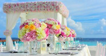 חתונות בטבע