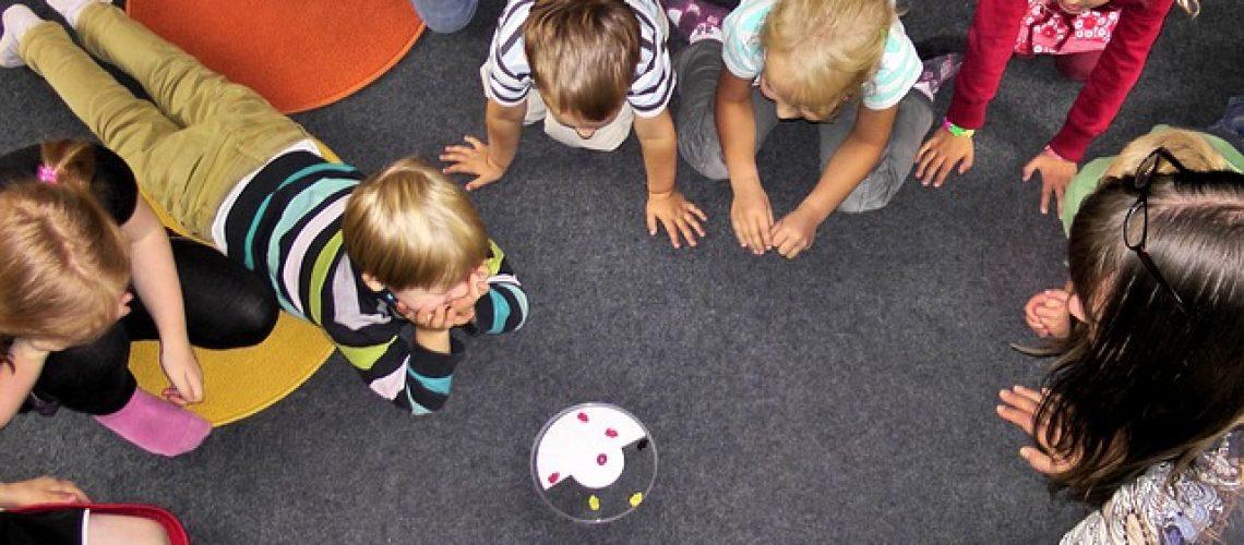 הפעלות לגני הילדים